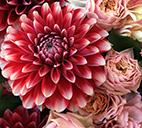 大ぶりな花材で